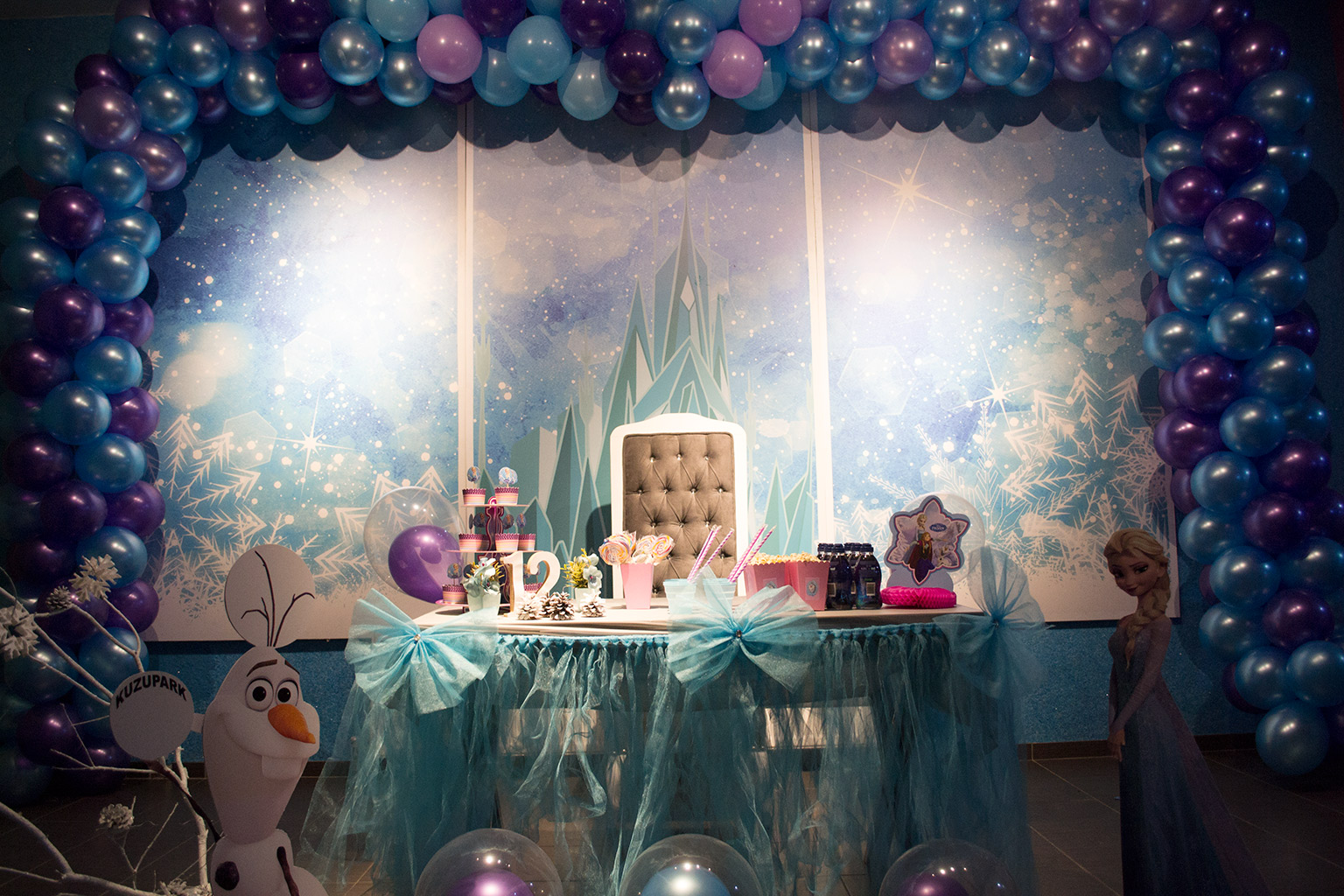 Kuzupark Elsa Doğum Günü Konsepti